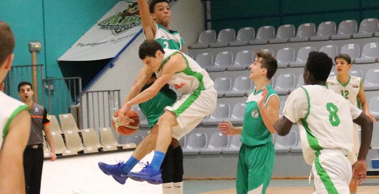 Les Equipes du club ADA Basket Blois